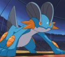 Tucker's Swampert (anime)