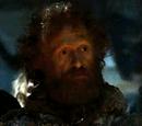 Wildling elder