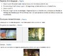 Tigali/Ressemblances entre certains jeux et Dragon Quest IX