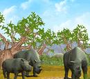 Critically endangered animals