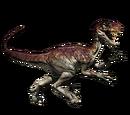 Novaraptor - skórka Sandstorm
