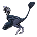 Snowviraptor.png