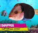 Don Snapper