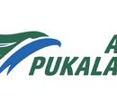 Air Pukalani