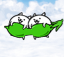 Bean Cats (Special Cat)