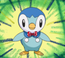 Piplup (Mystery Dungeon)