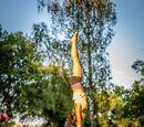 Akrobatik in Wien