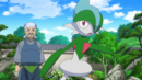 Woodward Gallade.png