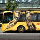 Copenhagen-Zoo-Snake-on-Bus-FINAL.jpg