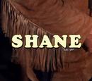 Shane (series)