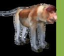 Proboscis Monkey (Dutch Designs)