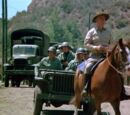 Bug Out (TV series episode)