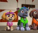 Skye/Gallery/Pup-Fu!