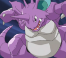 Paul's Nidoking