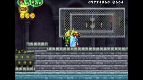 New Super Mario Bros Wii Infinite Coin Glitch 2P