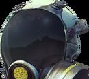 FR Mask
