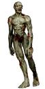 RECV Zombie B.png