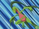 Ash Grovyle.png