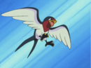 Ash Taillow.png