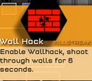 Wall Hack