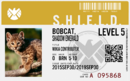 ShadowBobcat10 AOS Badge.png