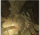 Krakens del Vacío
