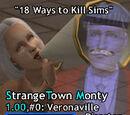 Veronaville Disaster