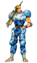 FWs Unknown Soldier Blue.png