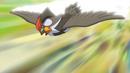 Ash Staraptor Quick Attack.png