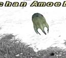 Eschan Amoeban