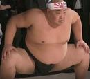 Pseudo-Sumo