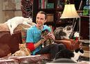 The Big Bang Theory S4x03.jpg
