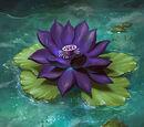 Stygian Lotus