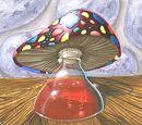 Galerie Breuvage de champignon mortel