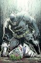 Dark Knight III The Master Race Vol 1 1 Textless Finch Variant.jpg