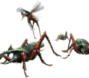 Neopteron