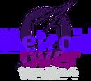 Metroidover/Fondo