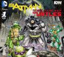 Batman/Teenage Mutant Ninja Turtles Vol 1 1