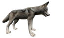 Wolf side.png