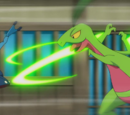 XY075: Rivals: Today and Tomorrow!