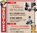 Naruto Hiden
