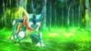 Greninja and Ninjask being revived.png