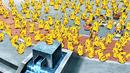 Pikachu M18.png