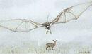 Gelupterus orientalis by hyrotrioskjan.jpg