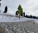 Den (2.7)/Bison Peak Cutoff