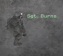 Marcus Burns