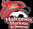 Halcones Marinos de Veracruz