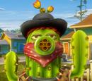 Bandit Cactus