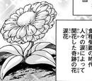 Tear Flower