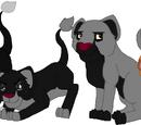 Kimba (Lioness)